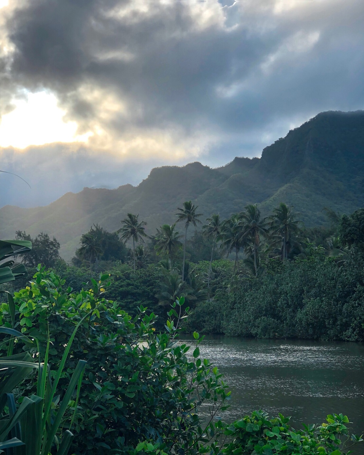LESSONS FROM HAWAI'I