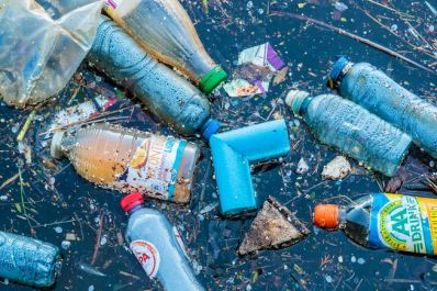plastic-pollution-river.jpg.653x0_q80_crop-smart